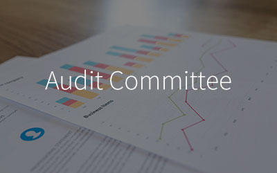 Audit-Committee