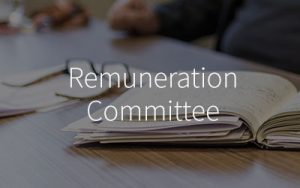 Remuneration-Committee